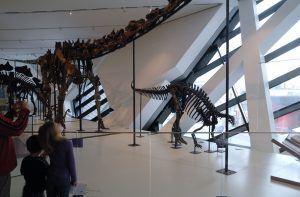 Royal Ontario Müzesi - Daniel Libeskind