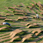 Root Bench / Yong Ju Lee Architecture