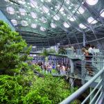Kaliforniya Bilim Akademisi Müzesi / Renzo Piano + Stantec Architecture