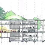 Kaliforniya Bilim Akademisi Müzesi / Renzo Piano + Stantec Architecture kesit